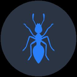 Ants Control Sorrento